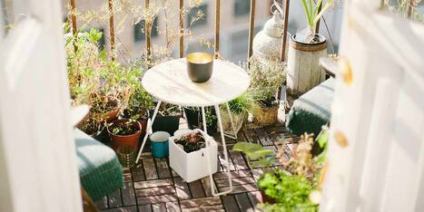 Balkonien Deko, Pflanzen und mehr