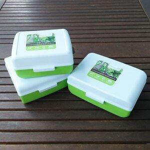 Lunchboxen im 3er Set von greenline - greenline