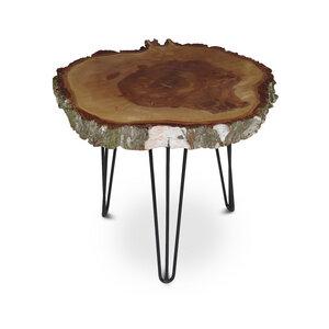 Couchtisch Baumscheibe Birke Massiv Beistelltisch Tisch XXl - GreenHaus