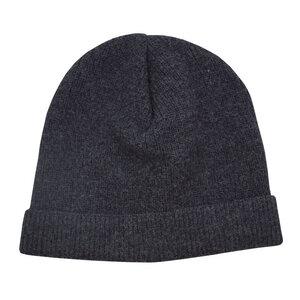 ICE-CAP - Mufflon