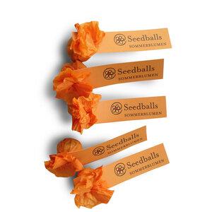 Fünf einzelne Seedballs Sommerblumenmischung - Seedballs