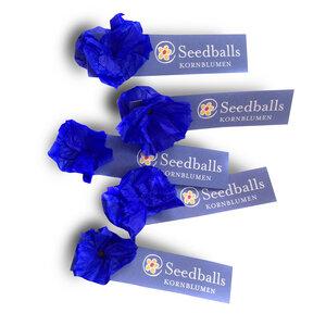Fünf einzelne Seedballs Kornblumen - Seedballs