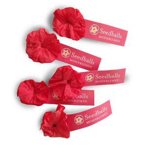 Fünf einzelne Seedballs Mohnblumen - Seedballs
