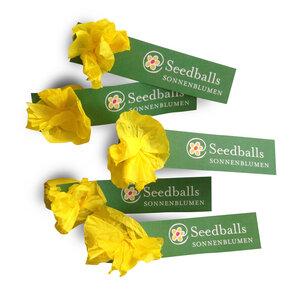 Fünf einzelne Seedballs Sonnenblumen - Seedballs