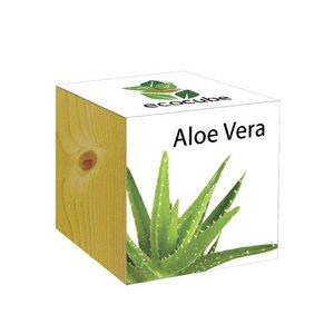 ecocube Aloe Vera - Holzwürfel - Extragoods