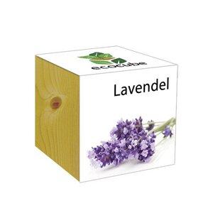 ecocube Lavendel - Holzwürfel - Extragoods