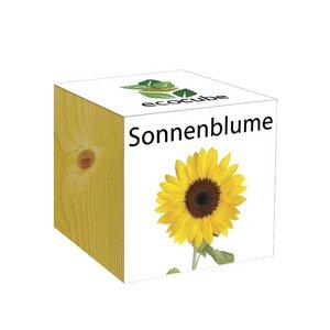 ecocube Sonnenblume - Holzwürfel - Extragoods