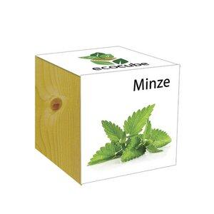 ecocube Minze - Holzwürfel - Extragoods