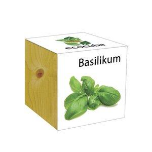 ecocube Basilikum - Holzwürfel - Extragoods