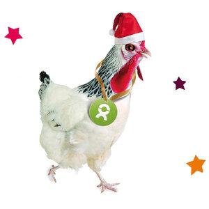 Huhn (Weihnachten) - OxfamUnverpackt