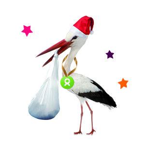Sichere Geburt (Weihnachten) - OxfamUnverpackt