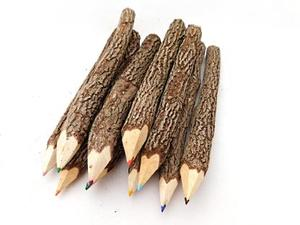 10 Buntstifte aus Holz/Ästen - fairanda