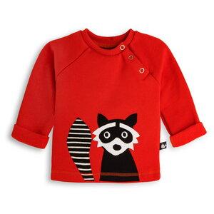 Baby Sweatshirt Waschbär - internaht