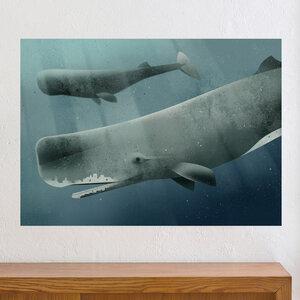Sperm Whale - Dieter Braun