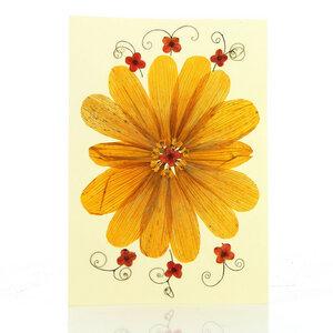 Grußkarte Wildblumen MANDALA - GLOBO