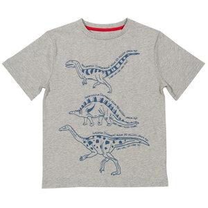 Kinder T-Shirt Dinosaurs  - Kite Clothing
