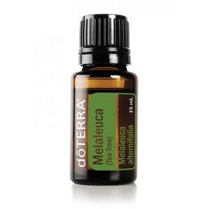 Teebaum (Melaleuca) ätherisches Öl 15 ml - dōTERRA