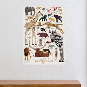 African Wildlife - Dieter Braun
