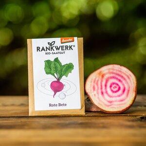 Bio-Saatgut für Gemüse - verschiedene Sorten II (Demeter-Qualität) - Rankwerk