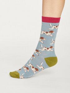 2er Set Hunde Socken - Springer Socks In A Bag - Thought
