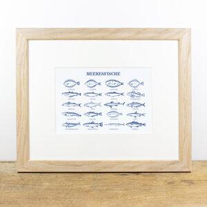 Bild mit Echtholzrahmen - Meeresfische - Bow & Hummingbird