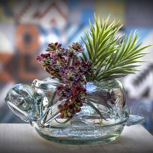 Blumenschale Schildkröte | Mundgeblasenes Glas - Mitienda Shop