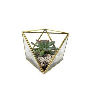 Geometrisches Terrarium aus Glas für Sukkulenten - Mitienda Shop