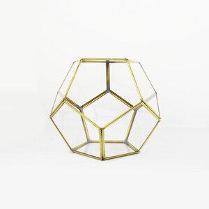 Geometrisches Terrarium aus Glas - Kugel - für Sukkulenten - Mitienda Shop