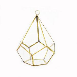 Geometrisches Terrarium aus Glas - Pentagonale - für Sukkulenten - Mitienda Shop