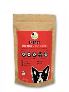 ENERGY Hundesnacks mit Insektenprotein und Goji-Beeren - eat small