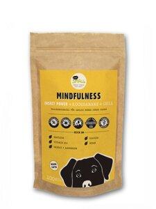 MINDFULNESS Hundesnacks mit Insektenprotein und Chia-Samen - eat small