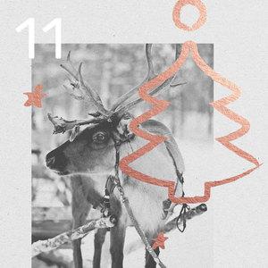 11. Türchen - Adventskalender