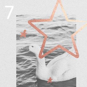 7. Türchen - Adventskalender