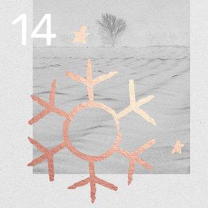 14. Türchen - Adventskalender