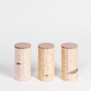 Müslidosen-Set / 3 Vorratsdosen aus Birkenrinde - T13: ø9x17cm - MOYA Birch Bark