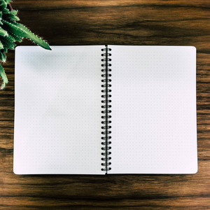 WoodBook Einlagen - JUNGHOLZ Design