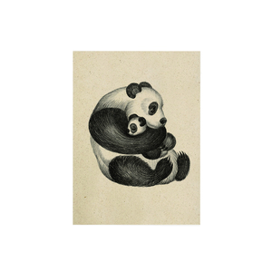 "Postkarte Graspapier - ""Panda"" - Matabooks"
