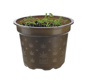 HANFi - Pflanztopf aus nachwachsenden Rohstoffen - meinwoody