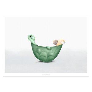 """Poster - Bild mit Schildkröte """"Die Chillis"""" - Dori´s Prints"""