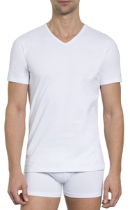 Herren Basic Shirt V-Ausschnitt Jersey 2er Pack Baumwolle/Elasthan - Haasis Bodywear