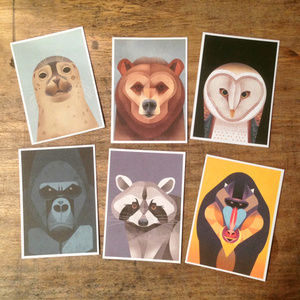 Wildlife Faces – Postkarten-Set - Dieter Braun