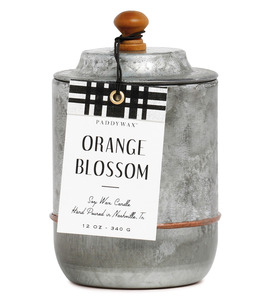 Duftkerze Homestead Orange Blossom - Paddywax