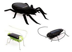 Solar Spielzeug Set Insekten - Vireo