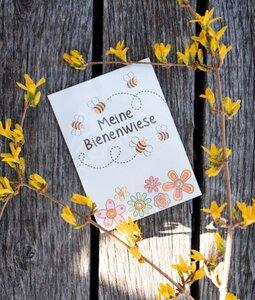Blumenwiese für Bienen - Wunderle