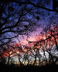 afterglow - Postkarte/ Geschenkkarte/ Fotokarte (gedruckt auf Naturpapier) - Burst