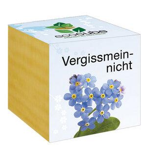 """Vergissmeinnicht im Holzwürfel - """"Ecocube"""" - EcoCube"""