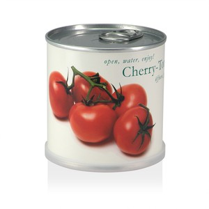 Pflanzen in der Dose - Cherry Tomate - MacFlowers