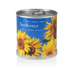 Pflanzen in der Dose - Sonnenblume - MacFlowers