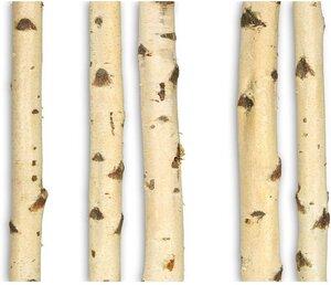 Birkenstamm Ø 5-10 cm 1-3 m Baumstamm Deko Birke Massivholz Dekoration Stamm - GreenHaus