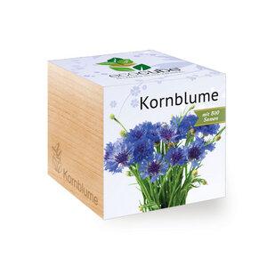 Kornblume im Holzwürfel mit Bio-Samen - EcoCube